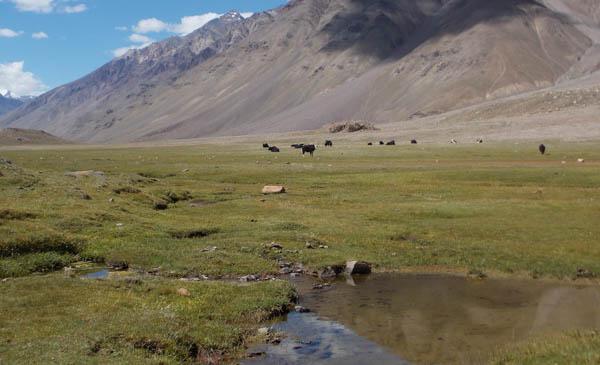 Lahaul Spiti Travel treks